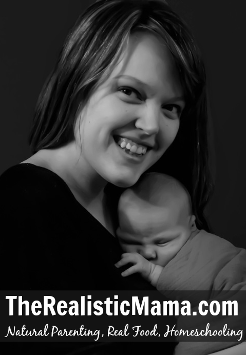 My Father's World Author's daughter, Alida, starts a blog. The Realistic Mama