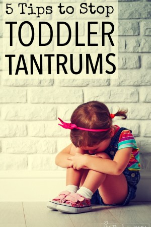 Stop Toddler Tantrums: 5 Ideas That Really Work