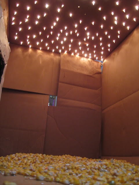 Light Box Tent