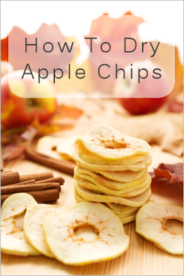 dry apple chips