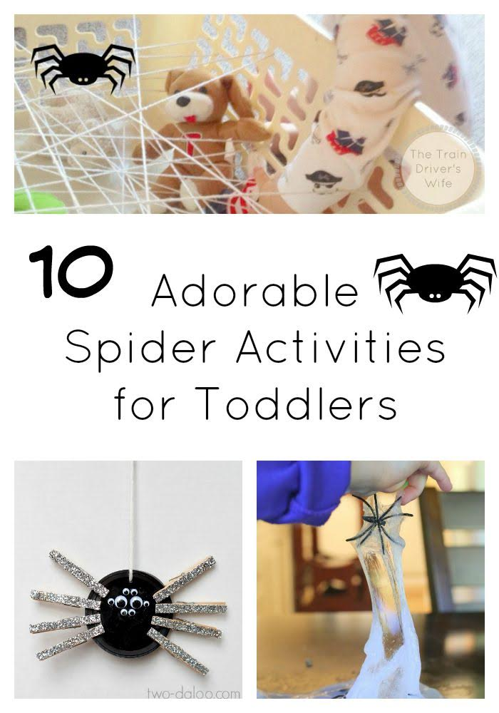 Spider Activities for Toddlers