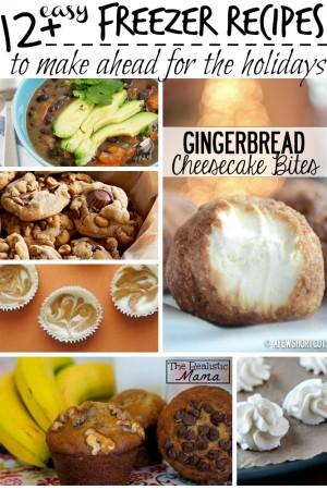 12+ Easy Freezer Recipes