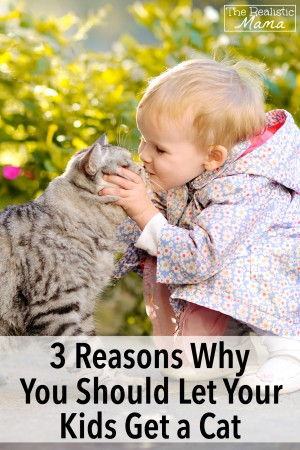 3 Reasons Why You Should Let Your Kids Get a Cat