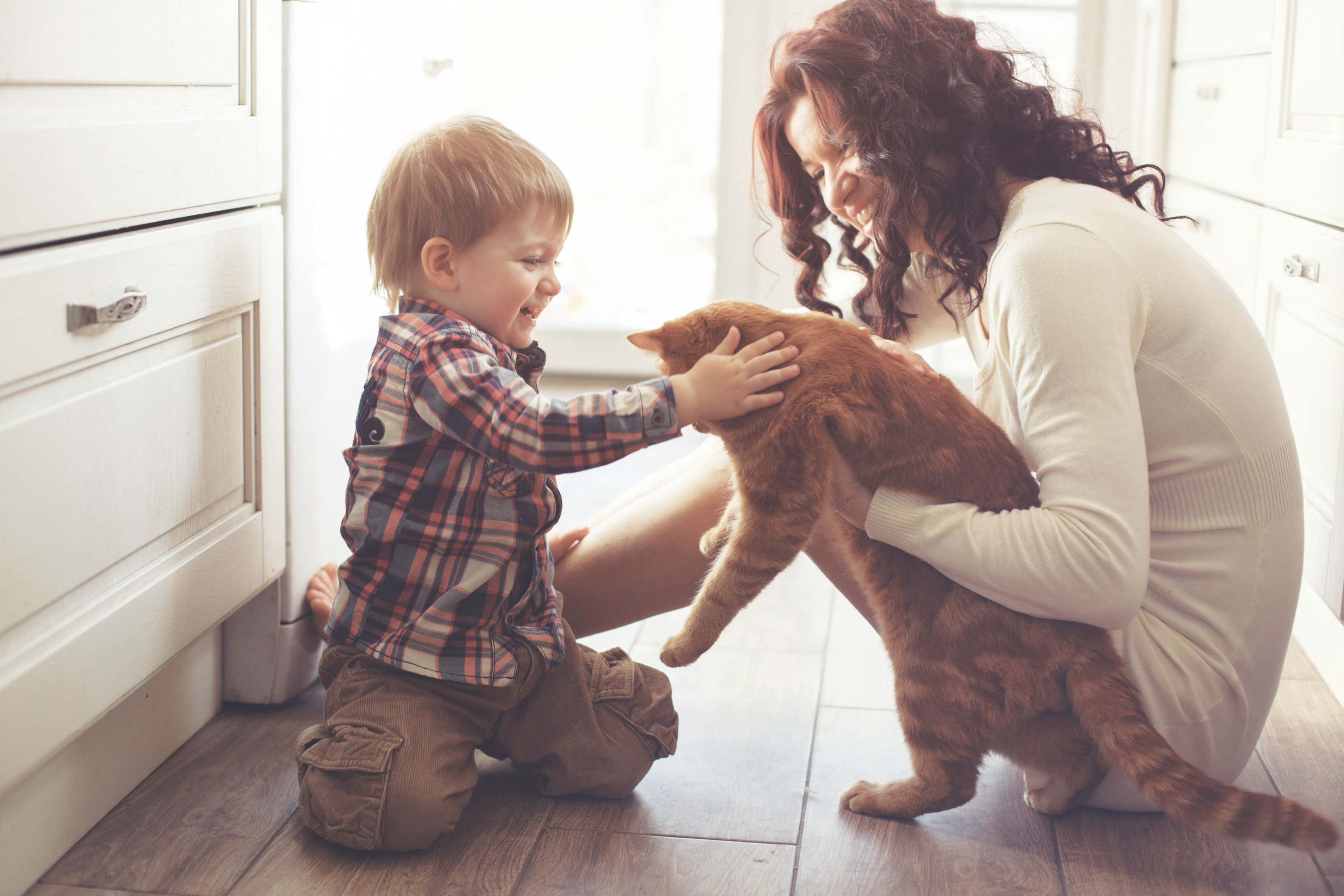3 Reasons You Should Get Your Kids a Cat!