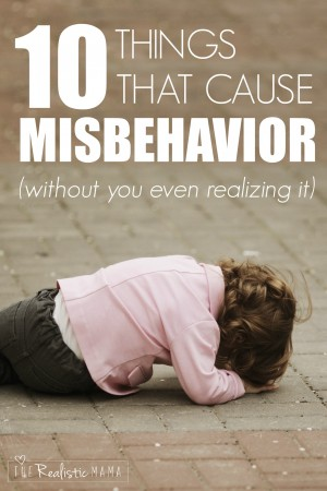 10 things that cause misbehavior (without you even realizing it)