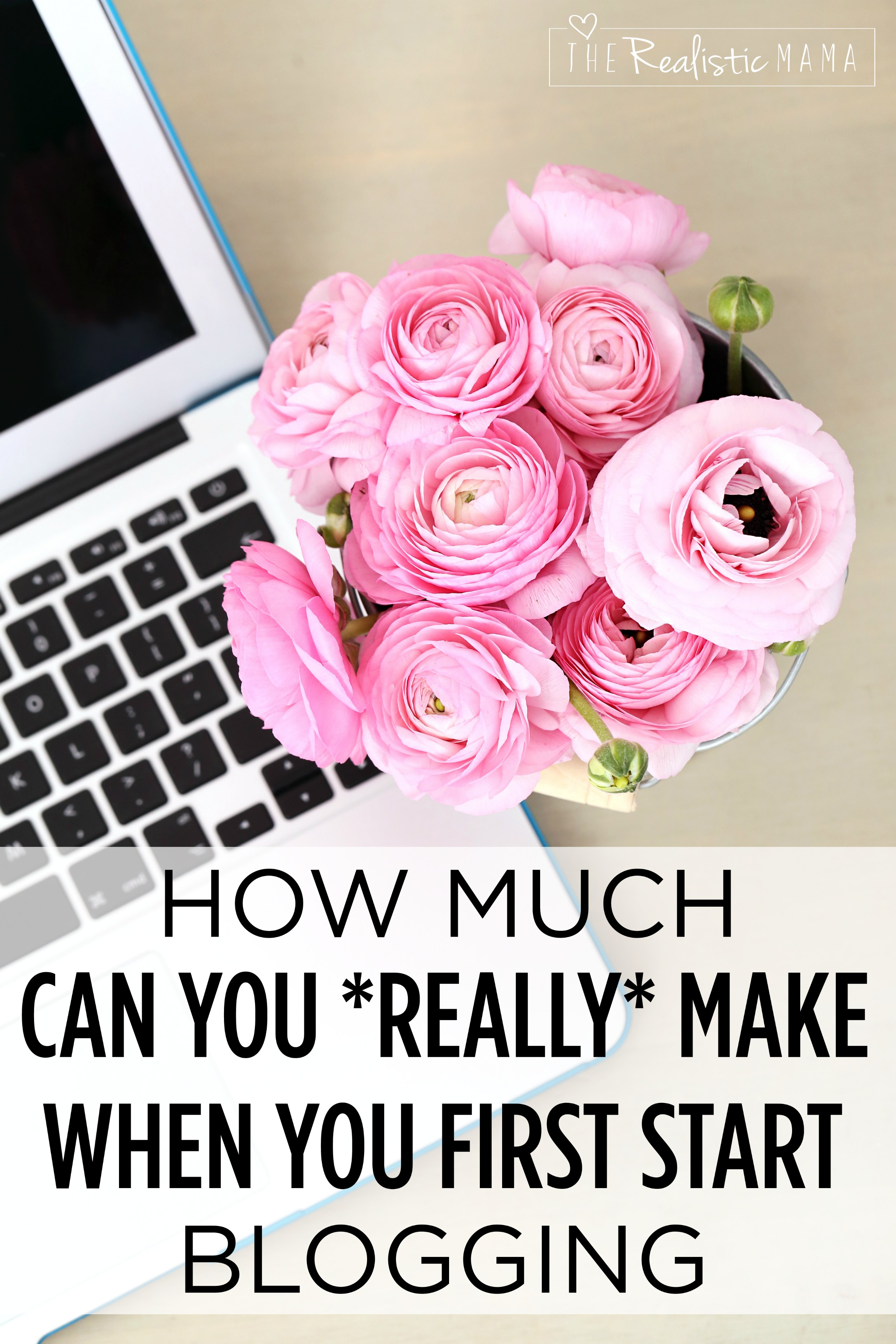 How much can you really make when you first start blogging.